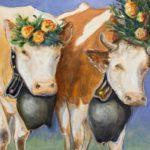 Duo de vaches brunes