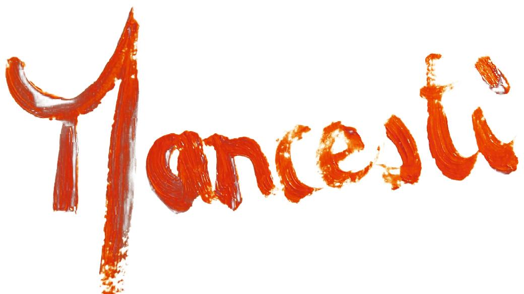 Mancesti.ch